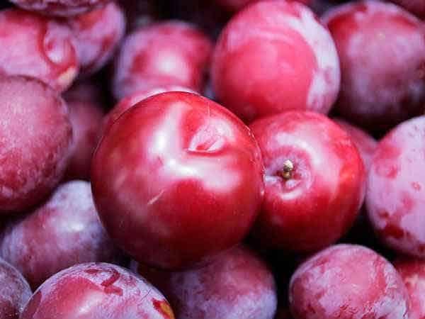 Trong mận chứa Axit citric giúp giảm cân hiệu quả