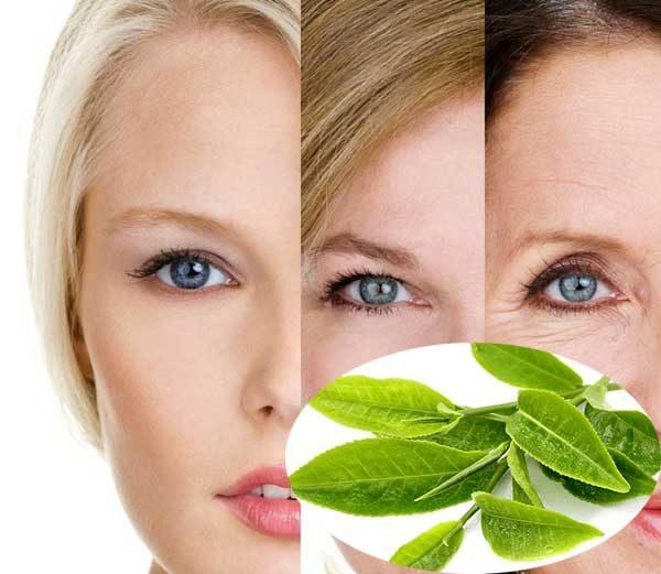 Giảm sự lão hóa của collagen